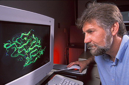 Chemist Vince Edwards examines a computer graphic image of an enzyme model used in the design of cotton-based wound dressings.