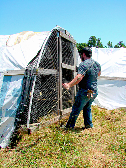 A veteran moving a chicken tractor across a pasture