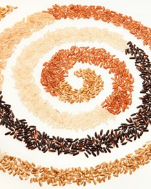 Different colored rice grains arranged in a spiral pattern