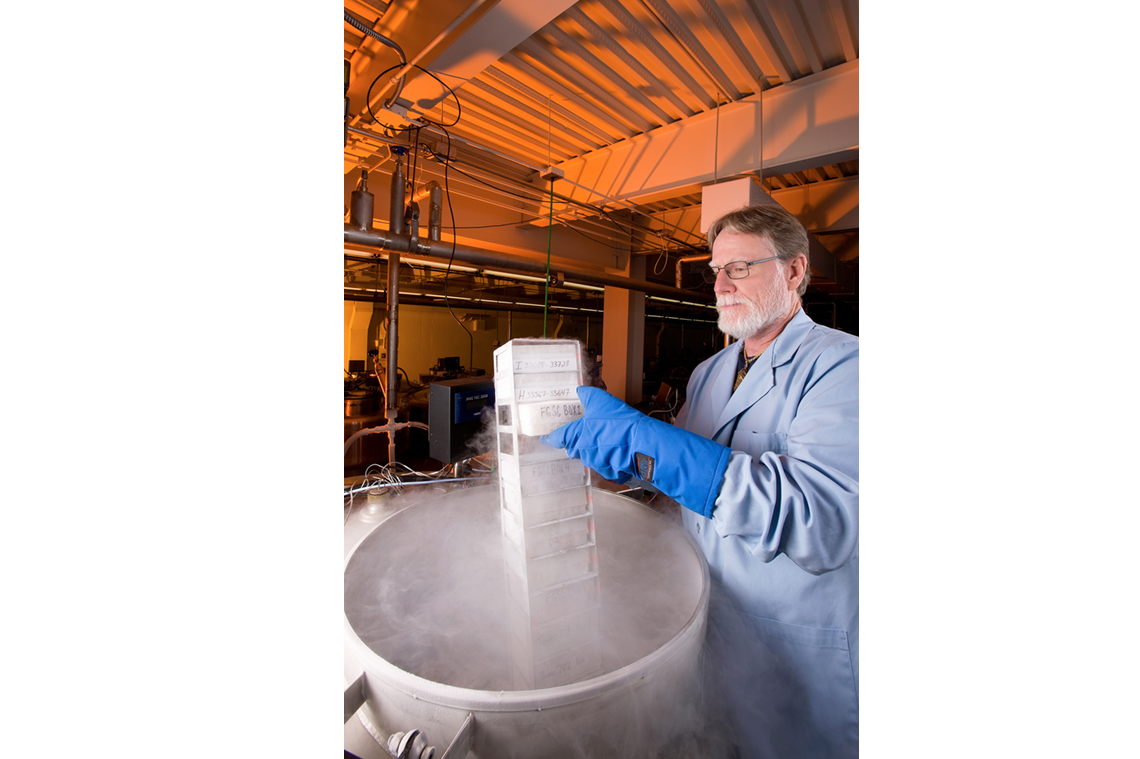 An ARS technician checks microbial isolates in a liquid nitrogen tank