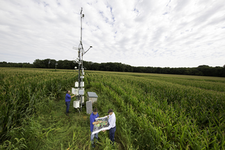 Three scientists collecting sensor data in a crop field