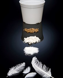 Chicken feathers, pellets made from chicken feathers and a biodegradable pot